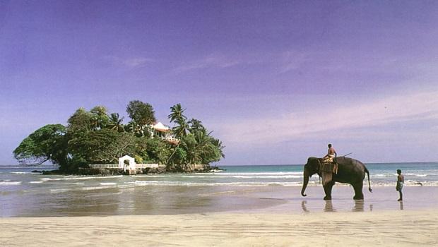 Aventure au Sri Lanka !