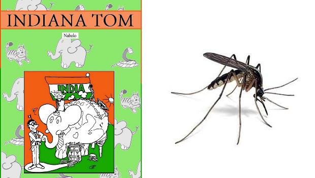 L'épisode du moustique