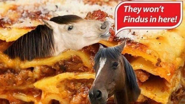 Comment distinguer un boeuf d'un cheval ?