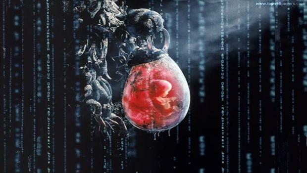 Société & Etat : une vision appuyée par le film «Matrix»